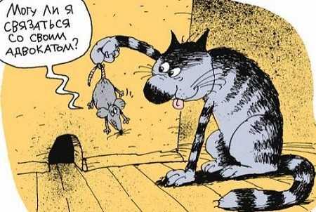 картинки анекдоты про вовочку самые смешные до слез