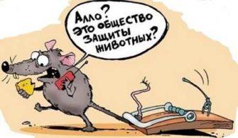 анекдоты смешные до слез лрб 335x195 - Читать анекдоты смешные до слез (матерные)