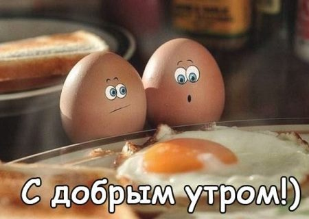 доброе утро картинки прикольные смешные с надписью