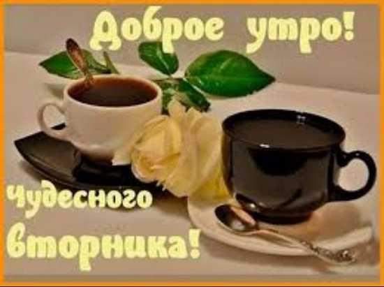 утро вторник картинки прикольные б - Вторник доброе утро хорошего дня картинки