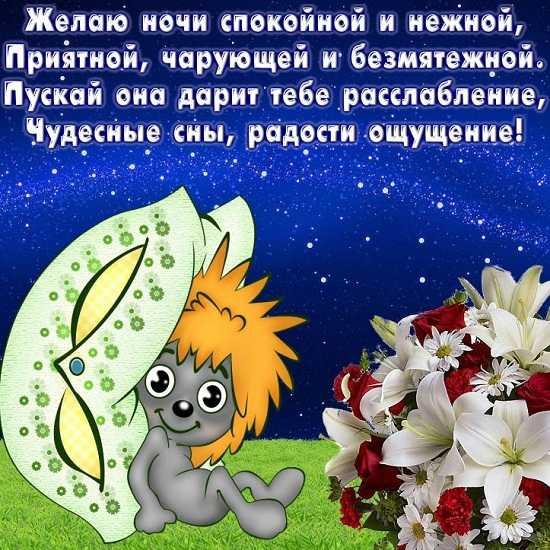 56 - Доброй ночи сладких снов стихи девушке