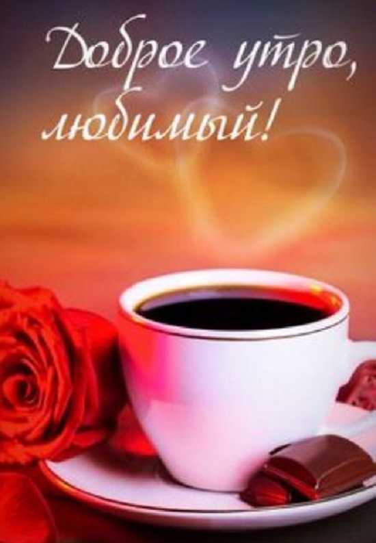 С добрым утром и хорошим днём картинки