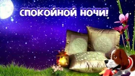 898 - Доброй ночи сладких снов стихи девушке