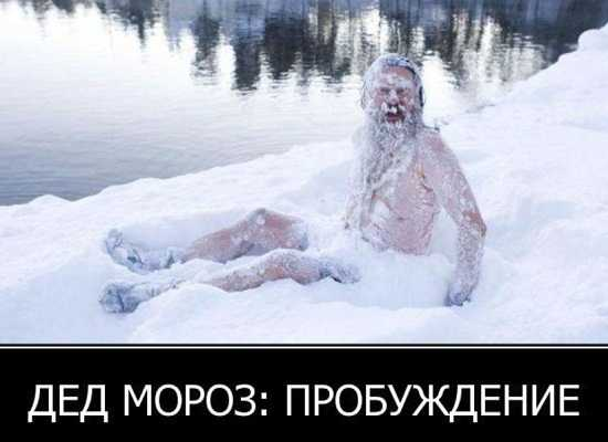 .jpg - Картинки смешные про Новый год