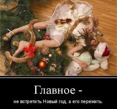 Картинки про Новый год смешные