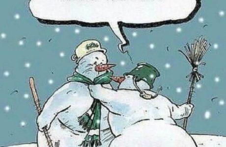 Смешные картинки про Новый год