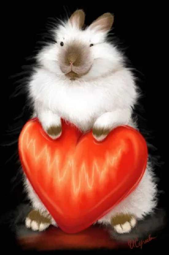 картинки 14 февраля день святого валентина