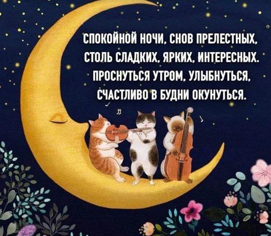 доброй ночи и сладких снов стихи девушке