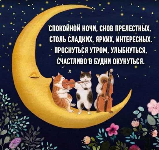 пожелание приятных снов в стихах нашем мультигастрономическом