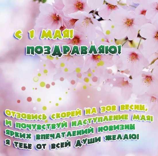 открытки на первое мая (5)