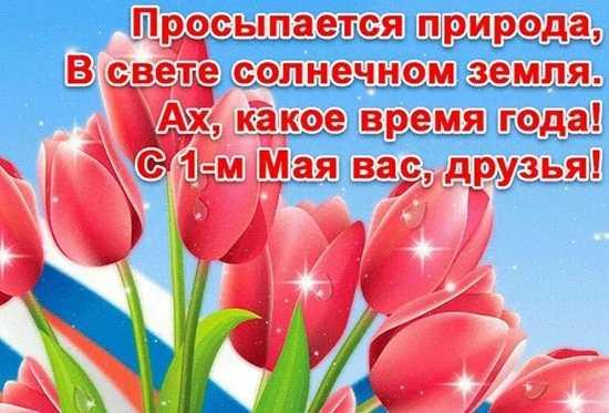первое мая картинки поздравления прикольные (4)