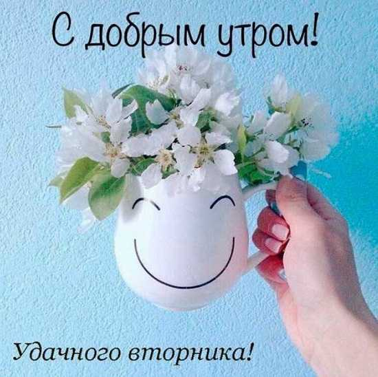 доброе утро вторника картинка с пожеланиями (3)
