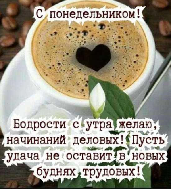 понедельник картинки доброе утро (2)
