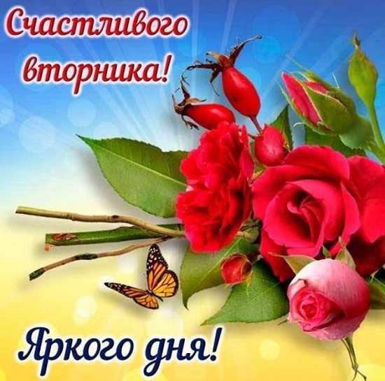 пожелание доброго утра вторника в картинках