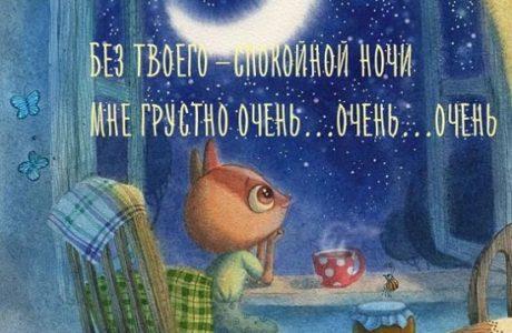 спокойной ночи картинки прикольные
