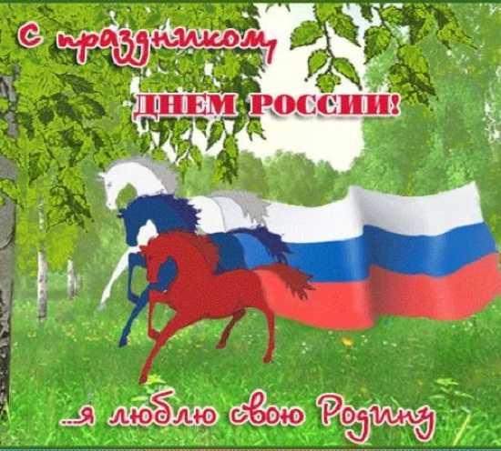картинки день россии прикольные (5)