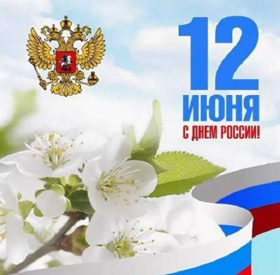 картинки день россии прикольные (7)