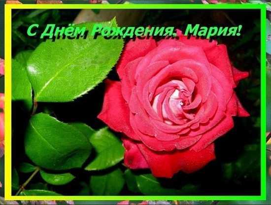 открытки с днём рождения марина красивые цветы тортики (2)