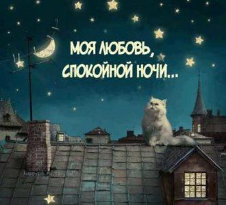 пожелания спокойной ночи картинки