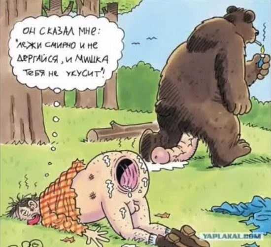 анекдоты про охоту смешные