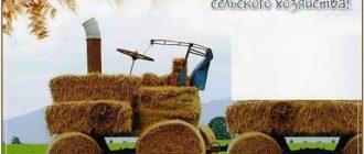 поздравление с днем работников сельского хозяйства в прозе