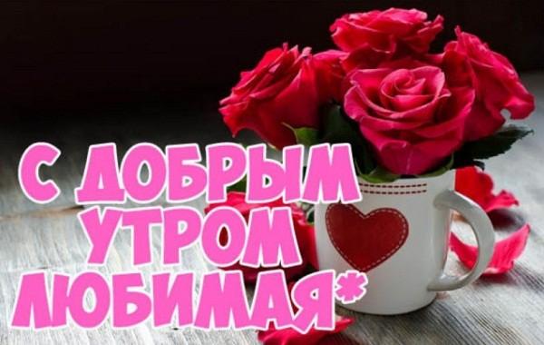 картинки с добрым утром любимая (2)