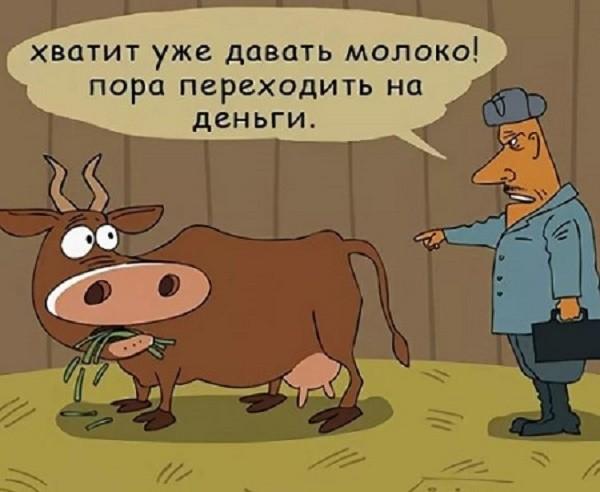 анекдоты про село,