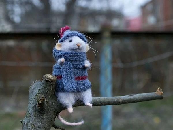 картинки с крысами прикольные (2)