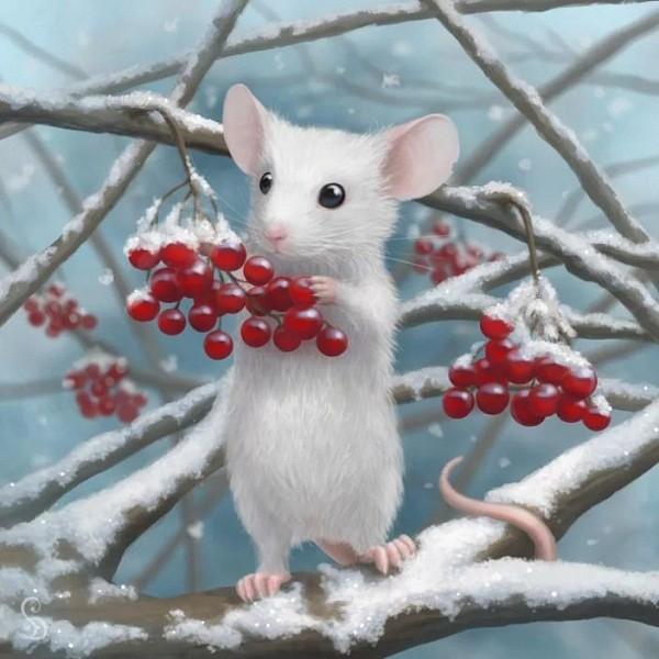 картинки с крысами прикольные (25)