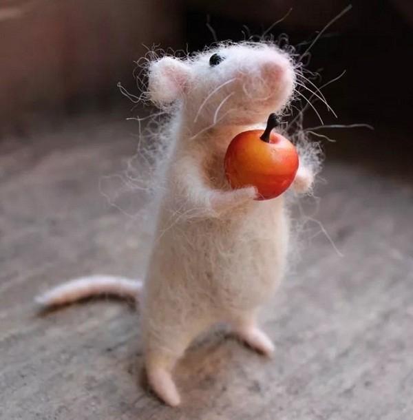 картинки с крысами прикольные (26)
