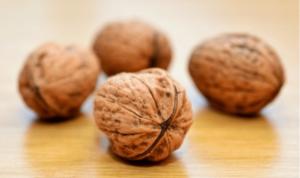 полезные свойства грецкого ореха для организма человека