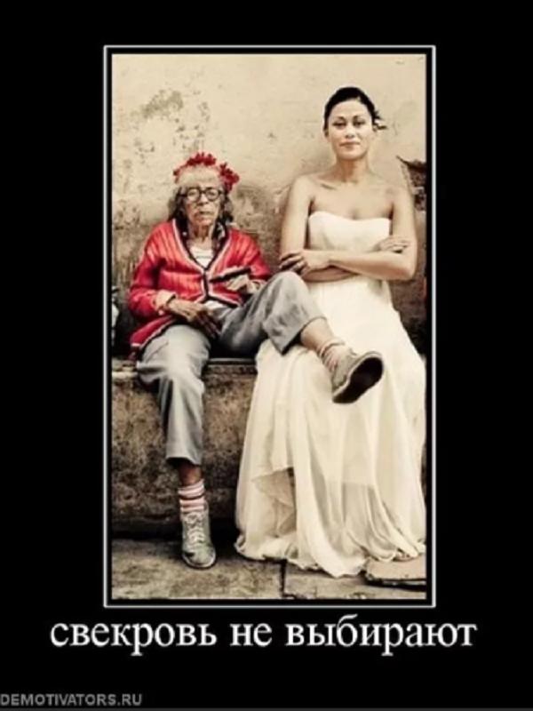 шутка про невестку и свекровь