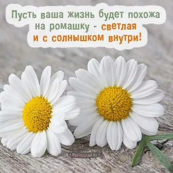 стихи пожелания добра и счастья короткие быт