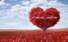 слова о любви девушке в прозе б