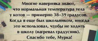 Смешные рассказы из жизни людей (6)