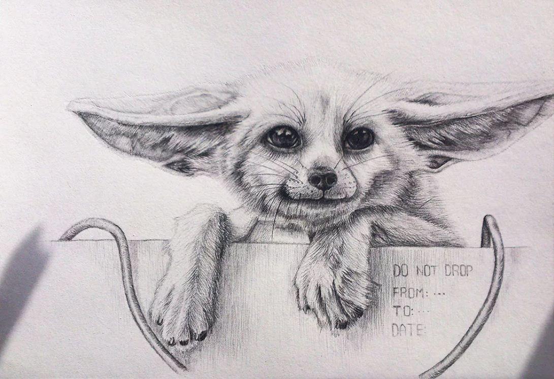 картинки карандашом прикольные (25)