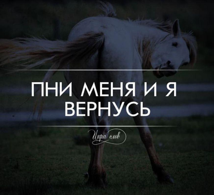 картинки с фразами (16)