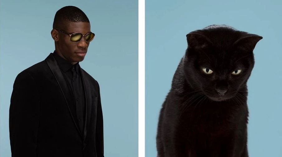 кошки похожие на хозяев (14)