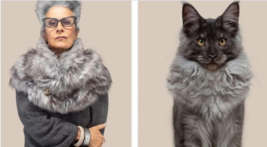 кошки похожие на хозяев (19)