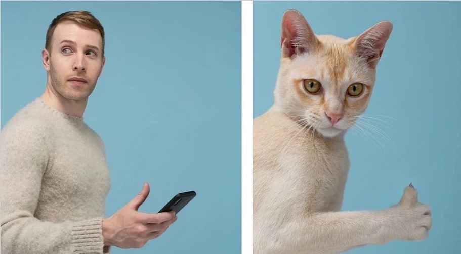 кошки похожие на хозяев (3)