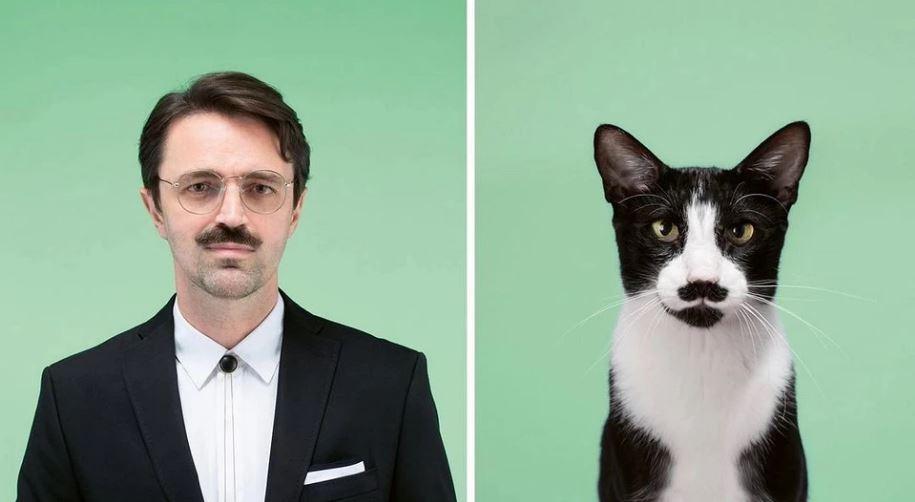 кошки похожие на хозяев (5)