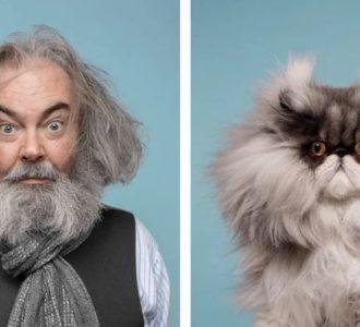 кошки похожие на хозяев (8)
