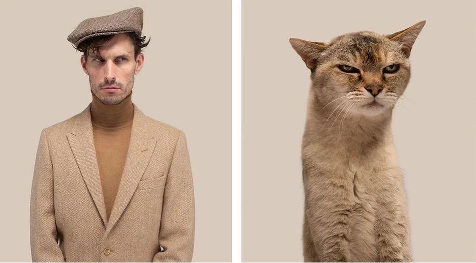 кошки похожие на хозяев