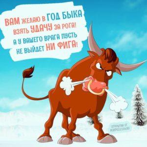 поздравления с новым годом б