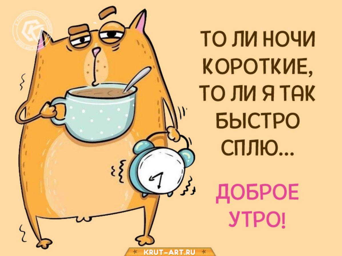 смешные картинки с добрым утром (14)