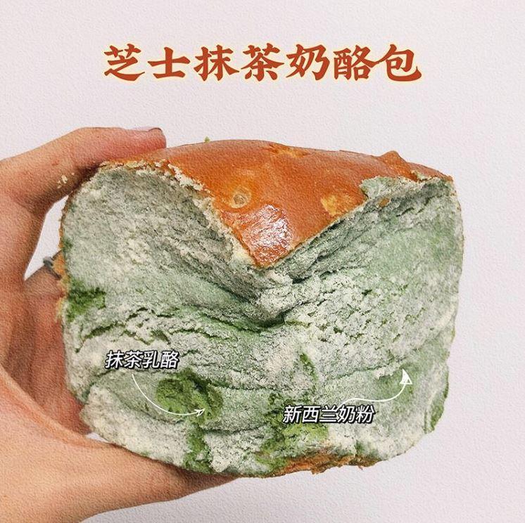 плесневелый хлеб (2)