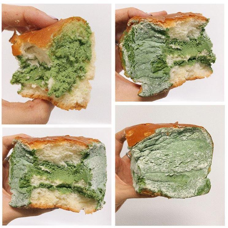 плесневелый хлеб (3)