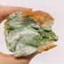 Этот плесневелый хлеб на фото, оказался кремовым деликатесом