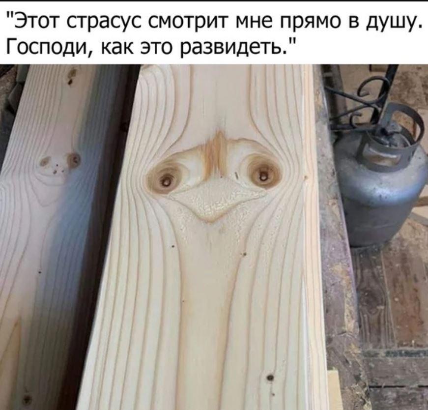картинки прикольные смешные (2)