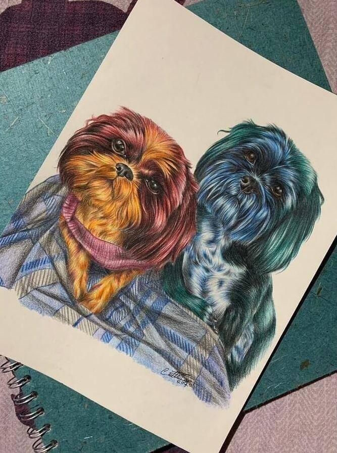 Животные карандашом (6)